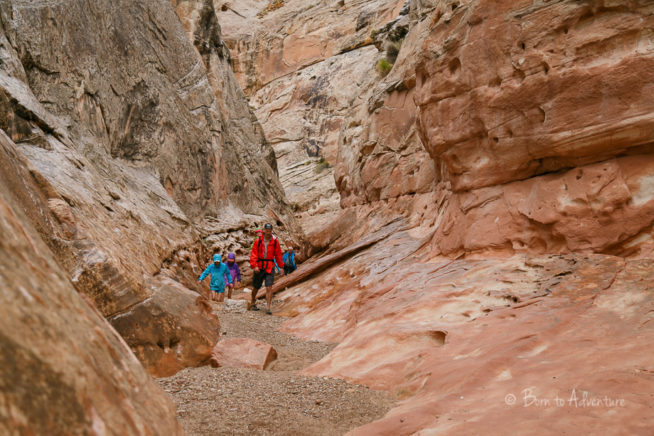 Hiking Little Wild Horse Canyon