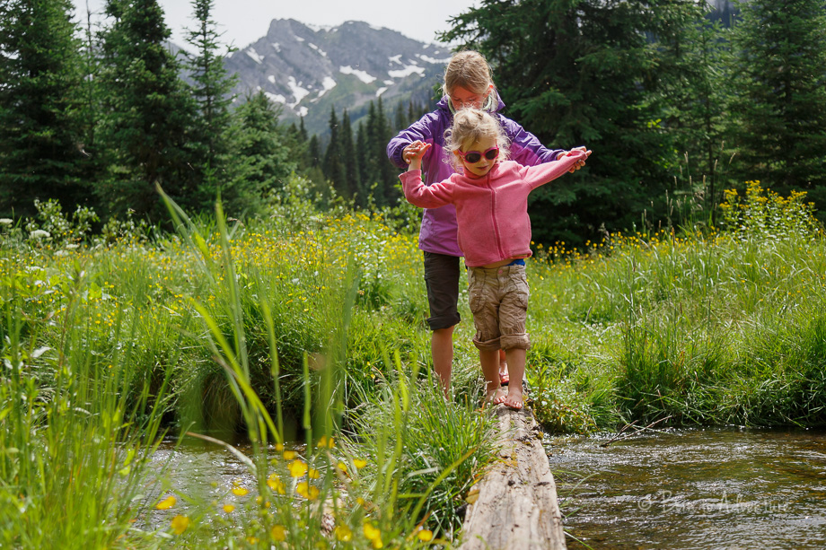 Kids walking log at Island Lake Lodge Fernie