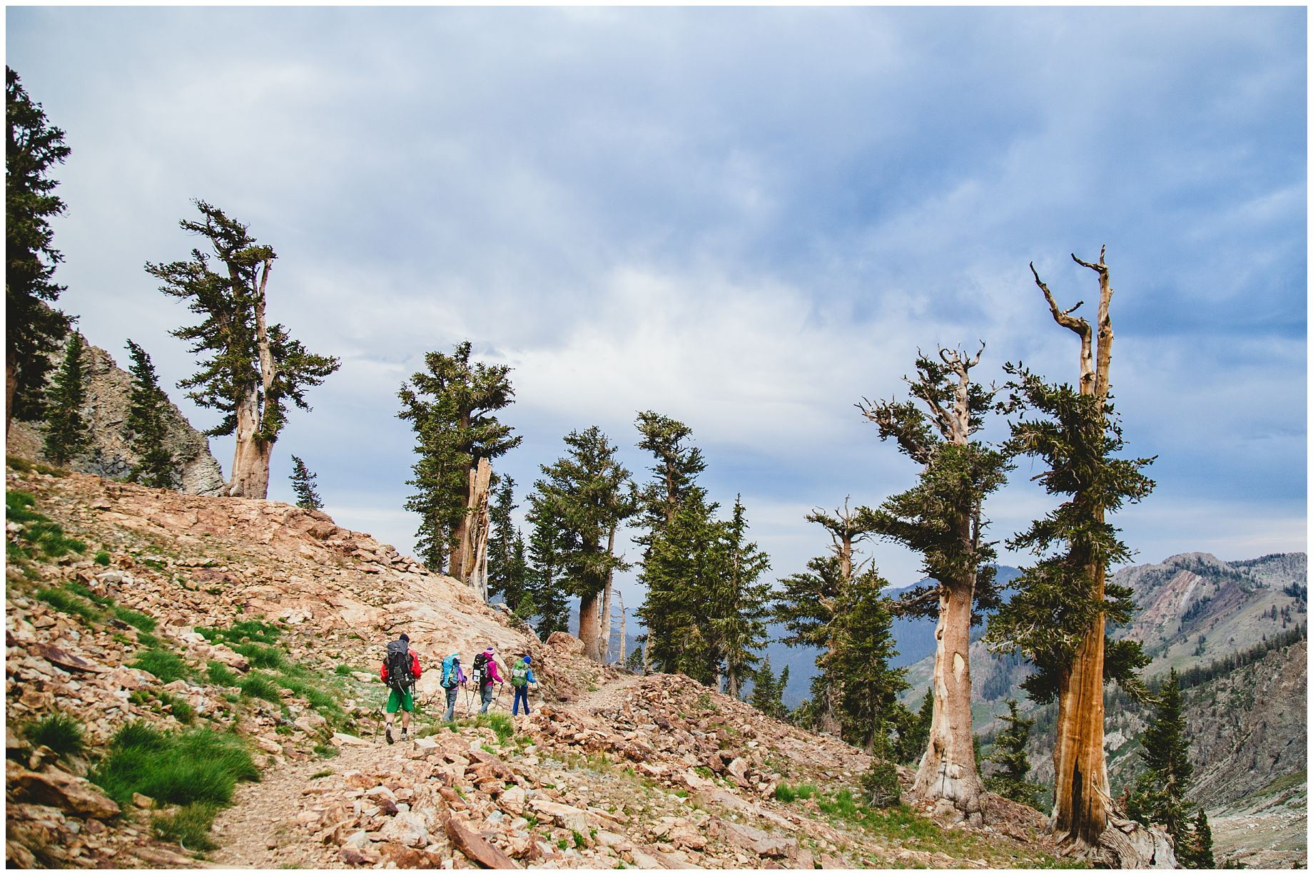 Sequoia National Park: Backpacking with Kids » Born to